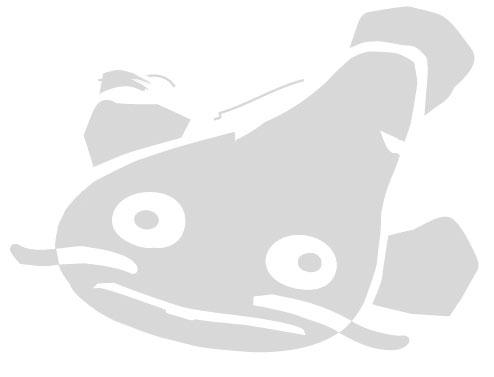 catfishBig-grey